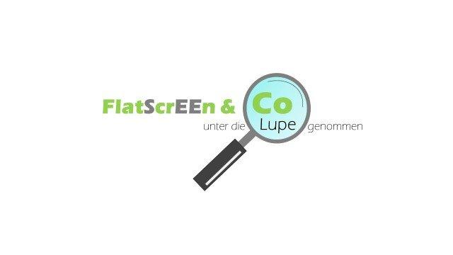 Logo der flatscrrenjourney initiative
